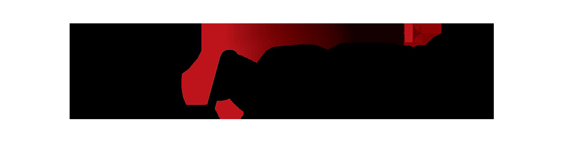 startix logo